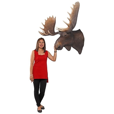 North American Majestic Moose Trophy Head Wall Sculpture